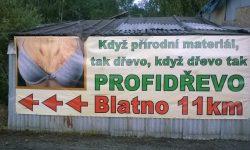 PROFIDŘEVO